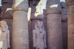 153.Pigeons at Luxor Temple