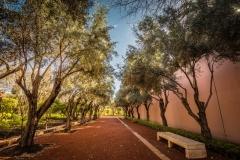 Cyber Park Marrakech 6