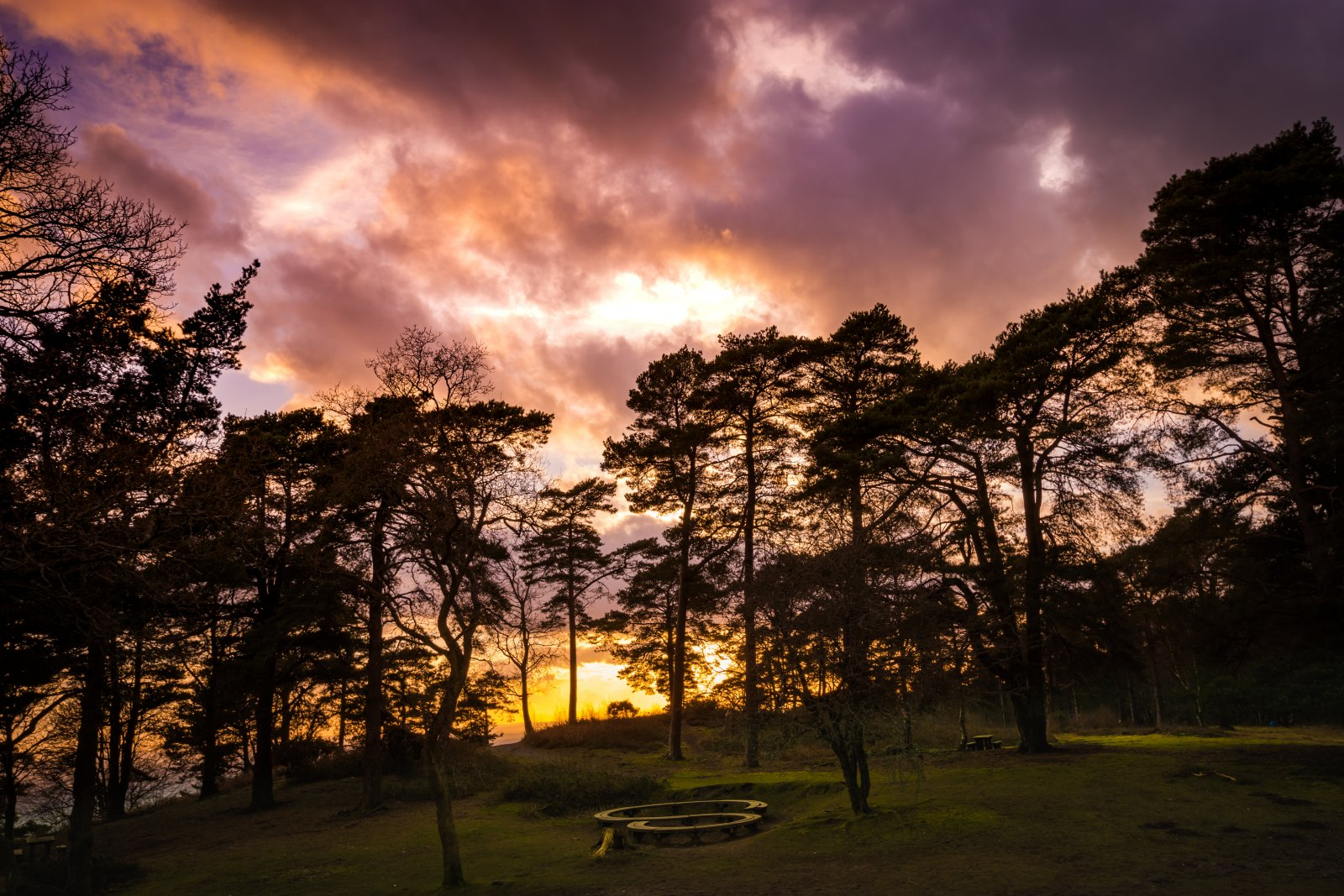 sunset on leith hill